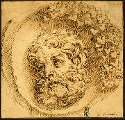 Head of a Faun in a Concave (roundel) dsf CARRACCI, Agostino