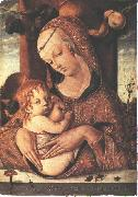 Virgin and Child dfg CRIVELLI, Carlo