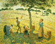 Apple Picking at Eragny sur Epte Camille Pissaro