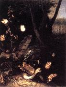 Still-life with Plants and Reptiles ery SCHRIECK, Otto Marseus van