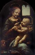 Madonna with a Flower LEONARDO da Vinci