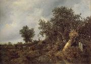 Landscape with a cottage and trees Jacob van Ruisdael