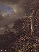 Oak Tree and Dense Shrubbery at the Edge of a pond Jacob van Ruisdael