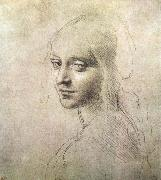 Head of a girl LEONARDO da Vinci