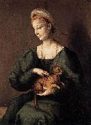 Woman with a Cat BACCHIACCA