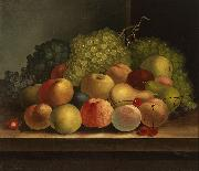 Still life, fruit oil on canvas painting by Van Diemonian (Tasmanian) artist and convict William Buelow Gould William Buelow Gould