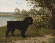A black water dog with a stick by a lake Jacques-Laurent Agasse