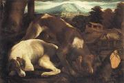 Two Dogs Jacopo Bassano