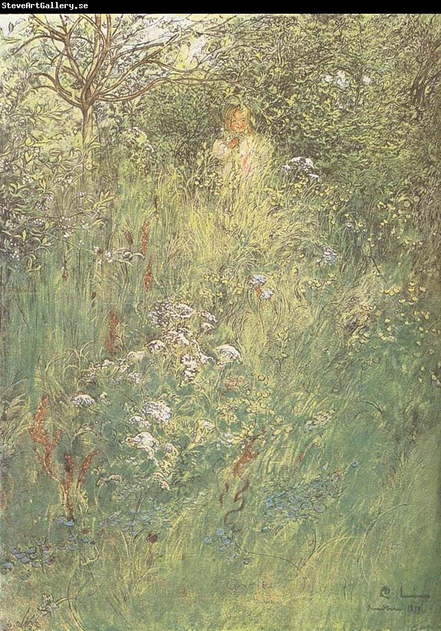 Carl Larsson in the Hawthorn Hedge