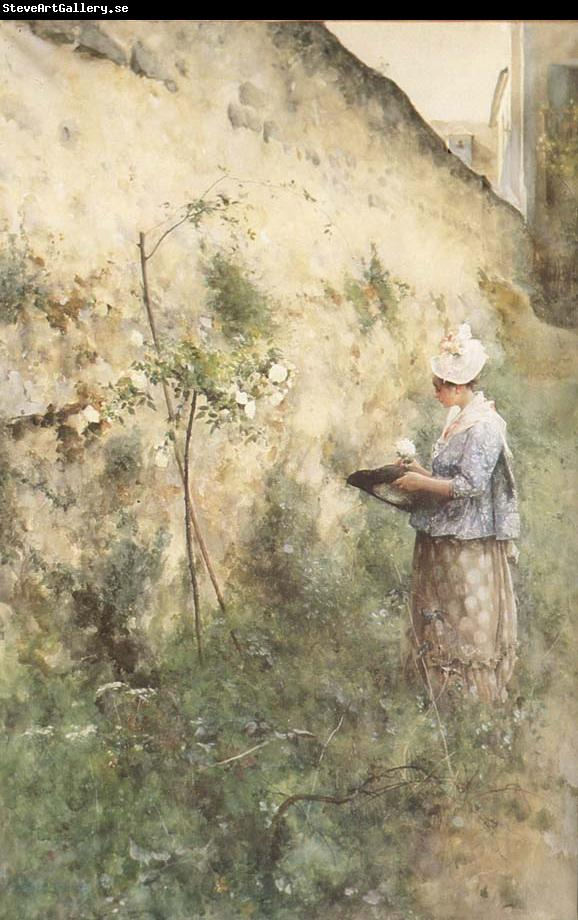 Carl Larsson The Old Wall