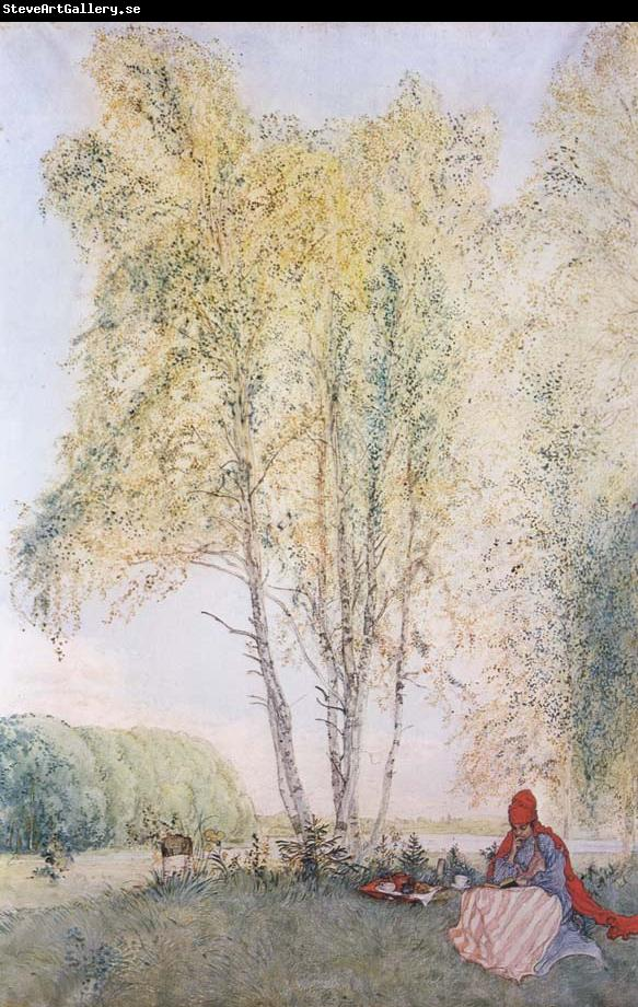 Carl Larsson A Nap Outdoors