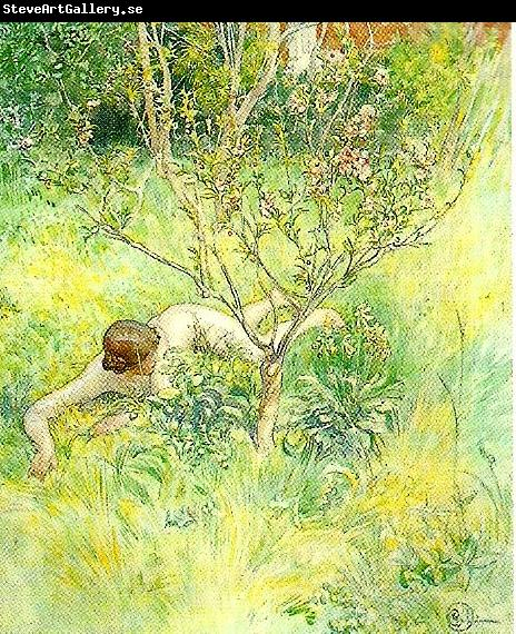Carl Larsson naken flicka under prunusbusken