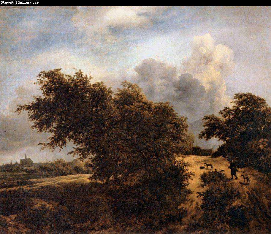 RUISDAEL, Jacob Isaackszon van The Thicket