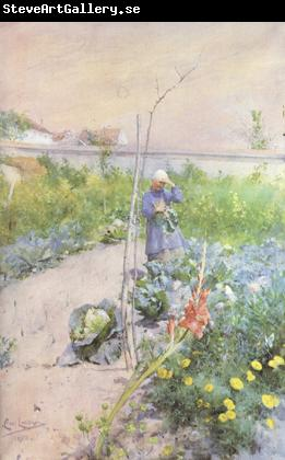 Carl Larsson In the Kitchen Garden (nn2